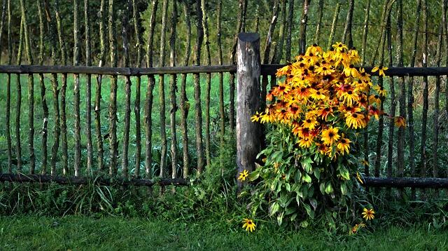 płotki do ogrodu