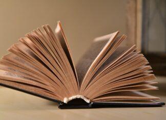 książki Remigiusza Mroza